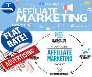 TAPNET Affiliate Marketing Network