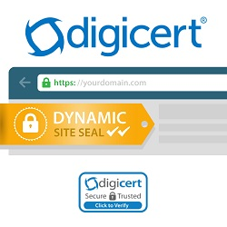 Best Pricing on SSL Certificates RapidSSL GeoTrust
